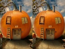 ���� The pumpkin house