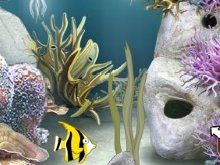 Игра Escape the reef